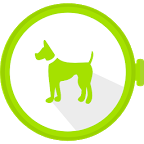 Dog Whistle for Android Wear